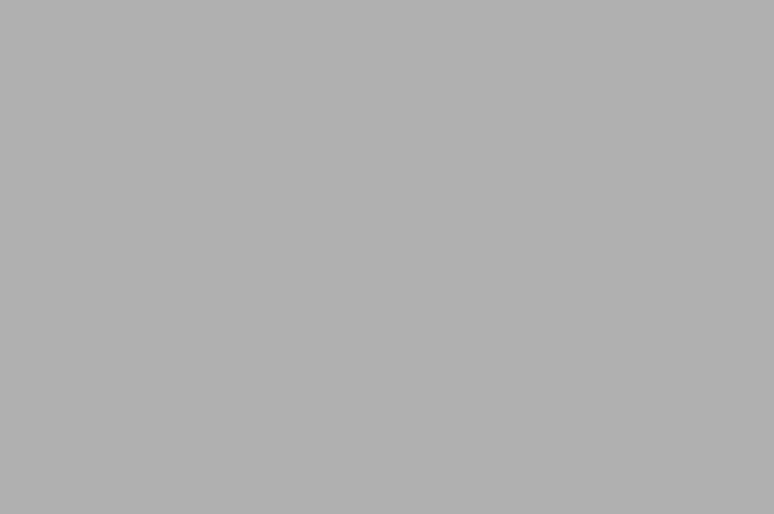 barva šedá